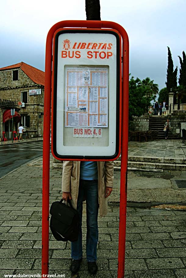 Checking timetable at the bus stop