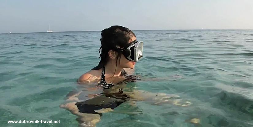 Snorkelling mask
