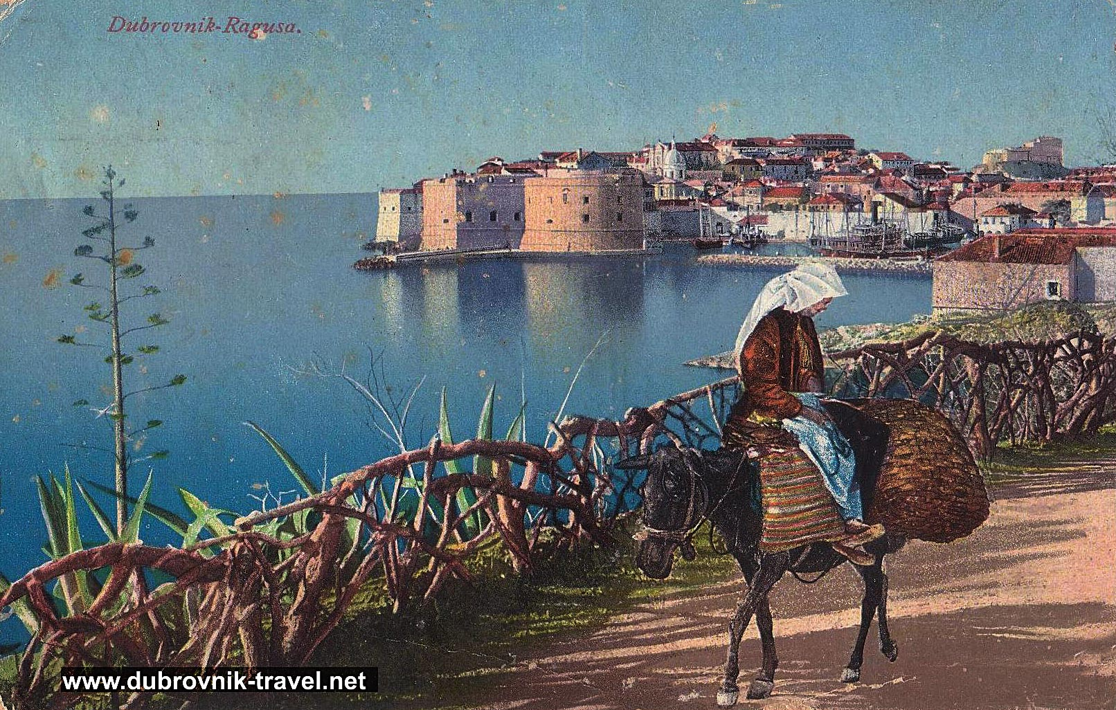 traveling-by-donkey-dubrovnik1890s