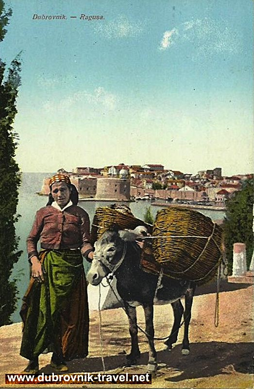 traveling-by-donkey-dubrovnik1900s
