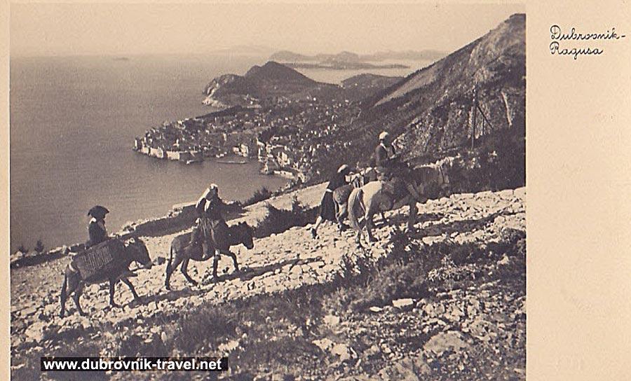 traveling-by-donkey-dubrovnik1920b