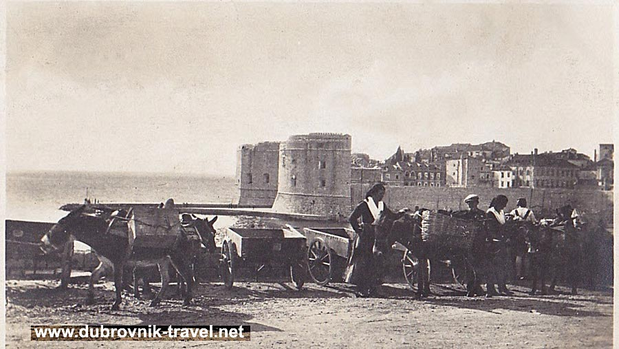 traveling-by-donkey-dubrovnik1932