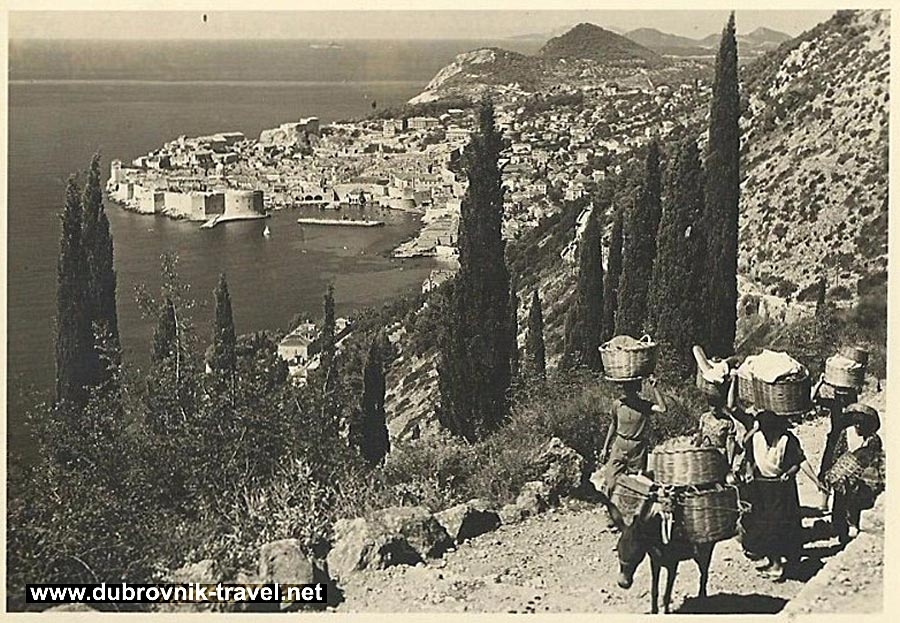traveling-by-donkey-dubrovnik1938a