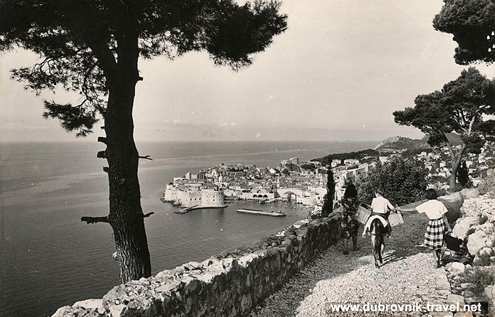 traveling-by-donkey-dubrovnik1950s