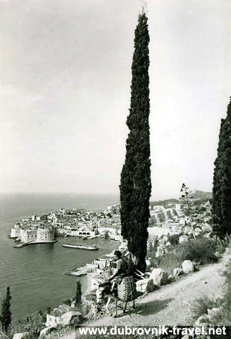 traveling-by-donkey-dubrovnik1965a
